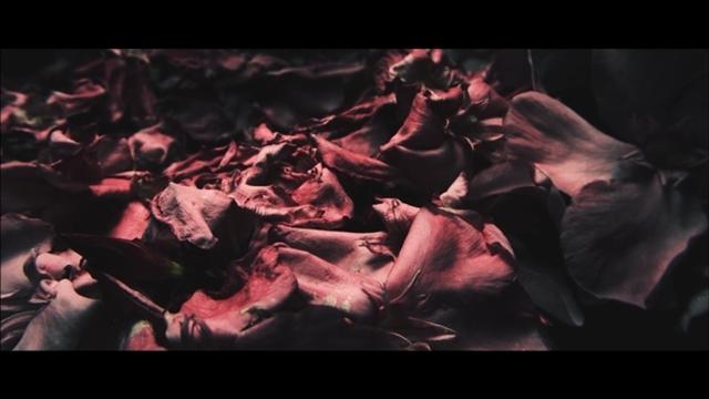 声優・斉藤壮馬さんの1stフルアルバム「quantum stranger」より、「結晶世界」のMV公開! 先行配信もスタート-4