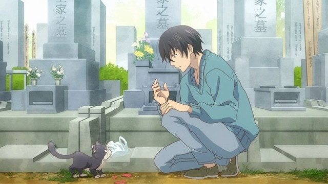 TVアニメ『同居人はひざ、時々、頭のうえ。』山崎はるかさん×安済知佳さんインタビュー|前半パートと後半パートで視点の異なる、1人と1匹の物語に癒される!!-2