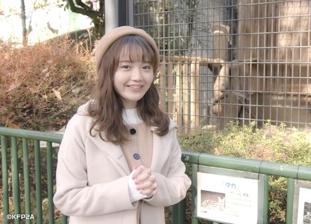 冬アニメ『けものフレンズ2』初回は放送直前特番に