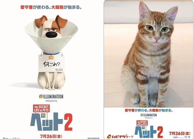 映画『ペット2』ティザービジュアルが公開