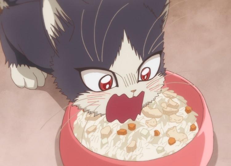 冬アニメ『ひざうえ。』第10話の先行カット到着