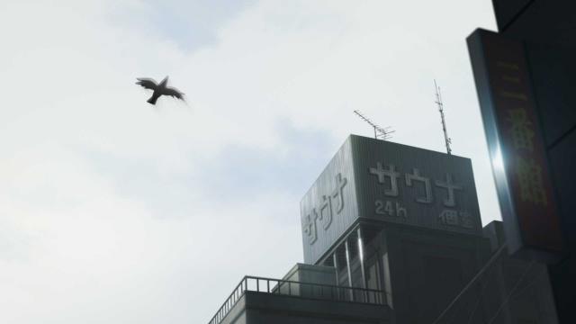 囀る鳥は羽ばたかない-9