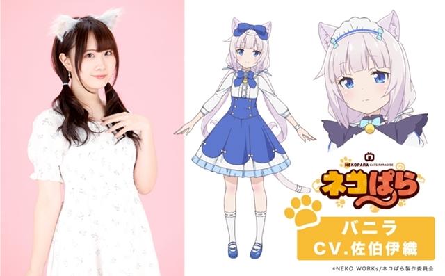 世界累計260万DLのゲームコンテンツ『ネコぱら』がTVアニメ化! 八木侑紀さん・佐伯伊織さんら出演声優も発表