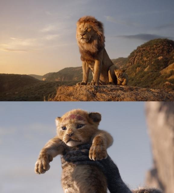 実写映画ライオンキングの注目ポイントに迫る