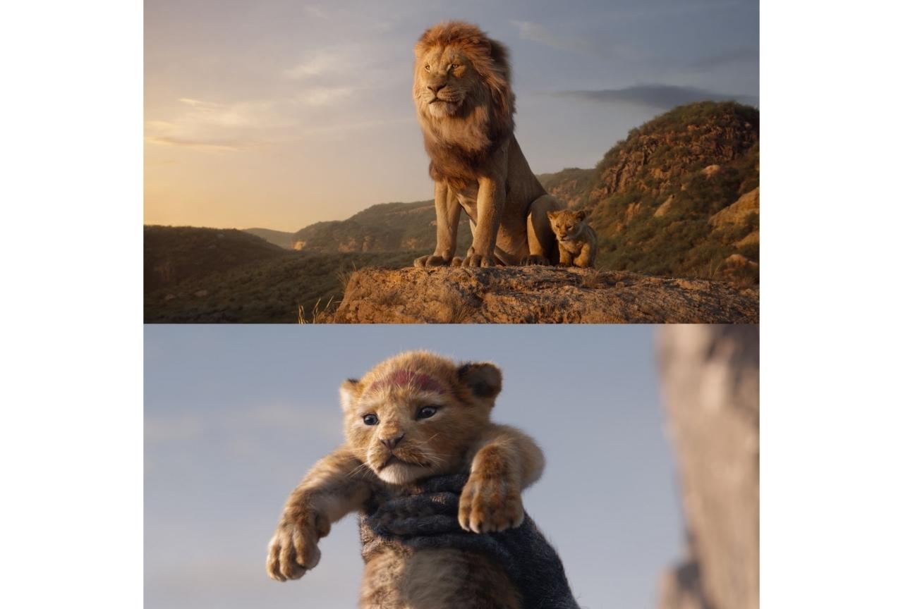 実写映画『ライオン・キング』の注目ポイントに迫る!