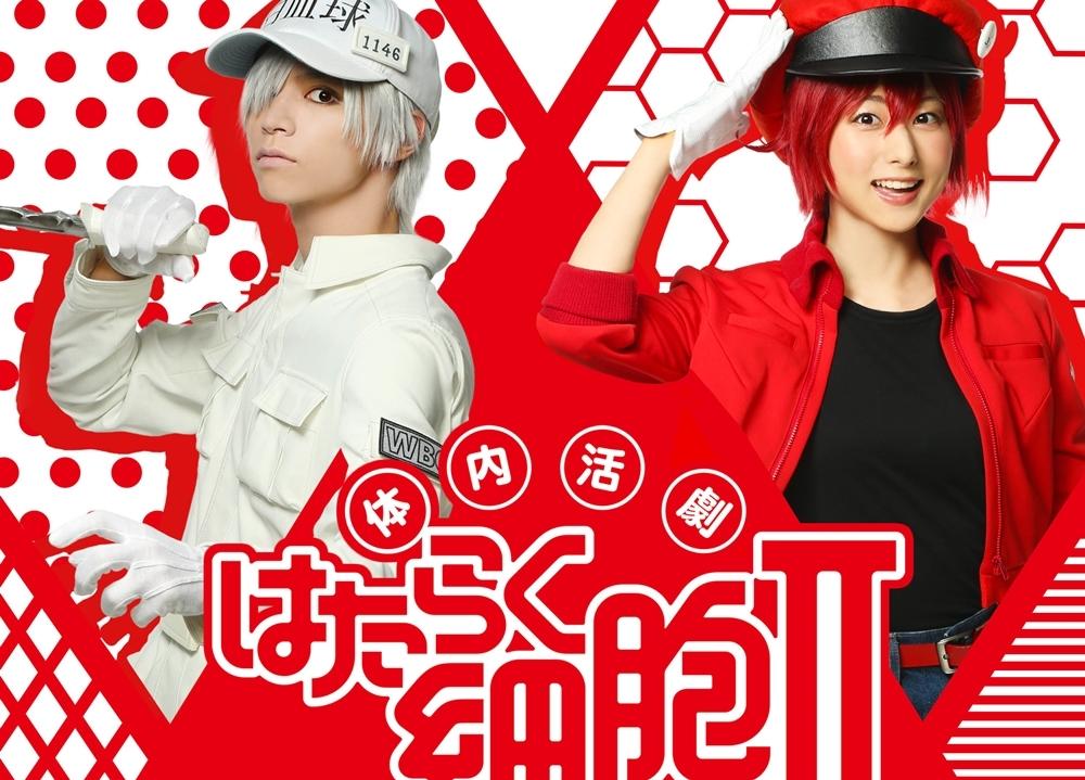 体内活劇「はたらく細胞」IIが公演決定!