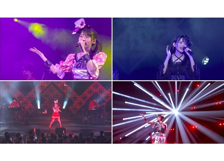 「上坂すみれのノーフューチャーダイアリー2019 LIVE Blu-ray」トレーラー映像公開
