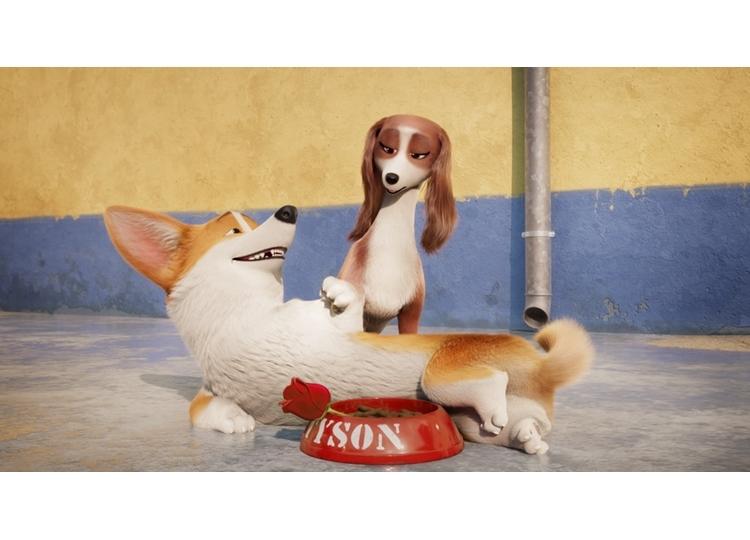 映画『ロイヤルコーギー』中村悠一演じるレックスがヒロイン犬を口説くシーン公開