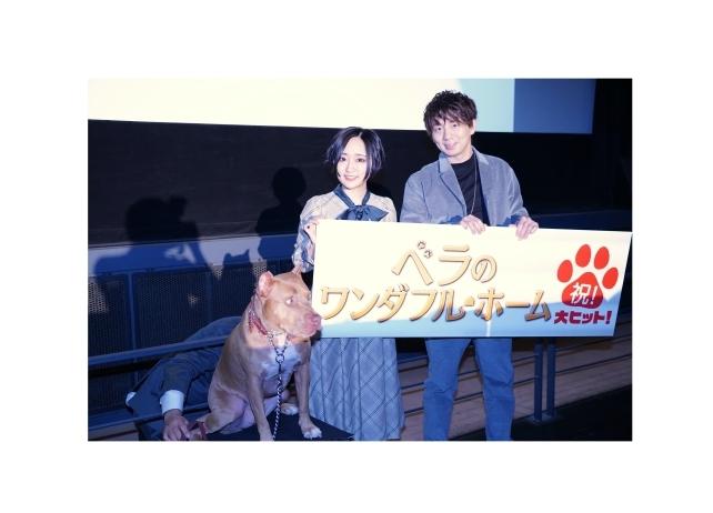 映画『ベラのワンダフル・ホーム』舞台挨拶に悠木碧、木村良平が登壇