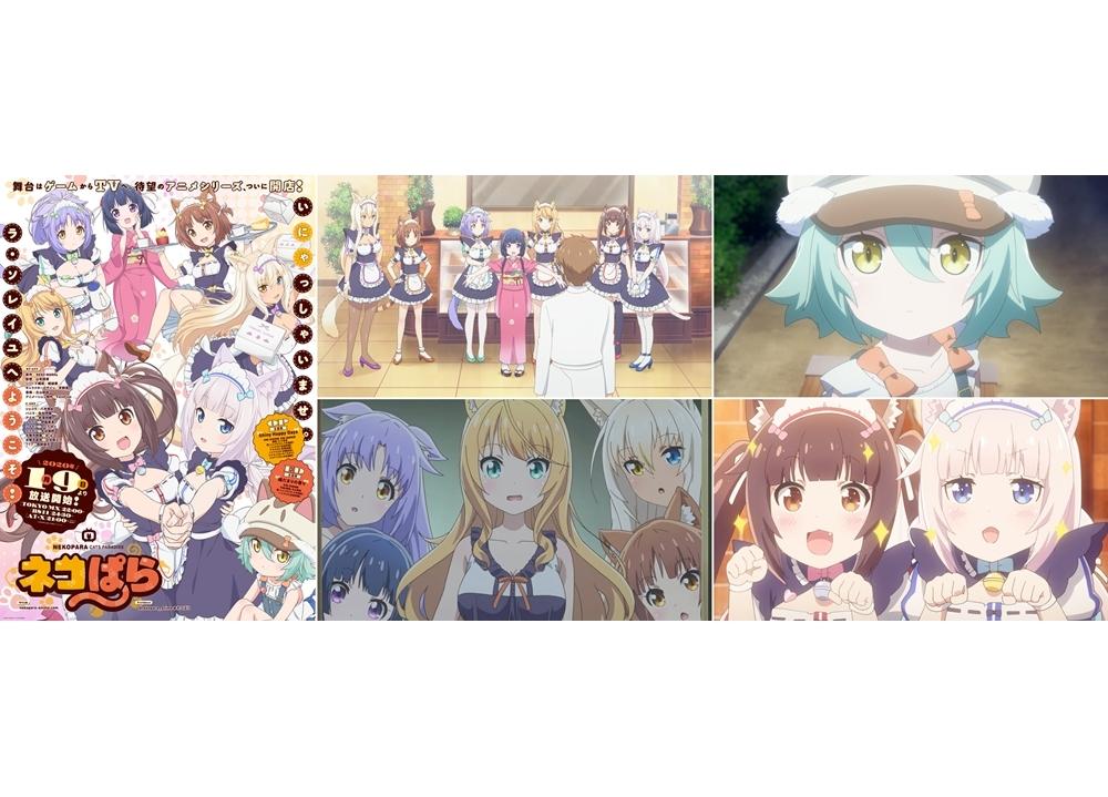『ネコぱら』TVアニメは2020年1月9日放送決定!