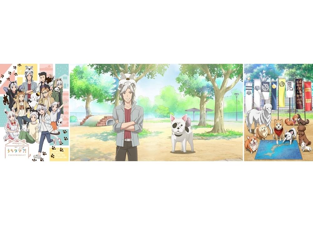 『うちタマ?!』×『織田シナモン信長』コラボムービー解禁!