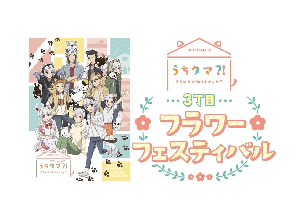 『うちタマ?!』BD&DVD第1巻が3月18日発売決定!