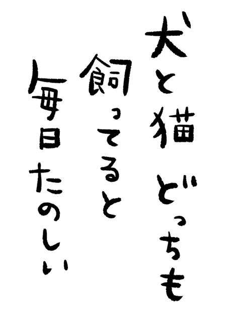 『ラブライブ!虹ヶ咲学園スクールアイドル同好会』『転生したらスライムだった件』など5作品の連合特番「バナステ!!」の配信が決定!-3