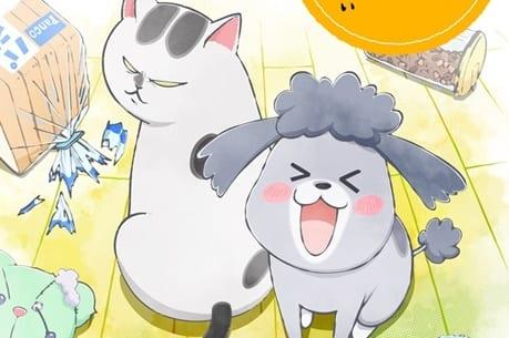 SNSで話題の漫画『犬と猫どっちも飼ってると毎日たのしい』が2020年秋にショートアニメとして放送決定! 声優・花澤香菜さん、杉田智和さん、金澤まいさんが出演-2