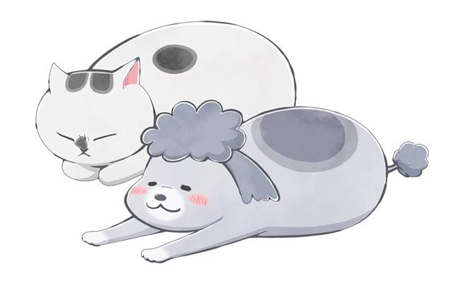SNSで話題の漫画『犬と猫どっちも飼ってると毎日たのしい』が2020年秋にショートアニメとして放送決定! 声優・花澤香菜さん、杉田智和さん、金澤まいさんが出演-3