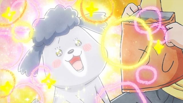 SNSで話題の漫画『犬と猫どっちも飼ってると毎日たのしい』が2020年秋にショートアニメとして放送決定! 声優・花澤香菜さん、杉田智和さん、金澤まいさんが出演-4