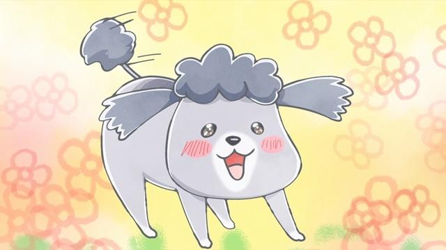 SNSで話題の漫画『犬と猫どっちも飼ってると毎日たのしい』が2020年秋にショートアニメとして放送決定! 声優・花澤香菜さん、杉田智和さん、金澤まいさんが出演-6