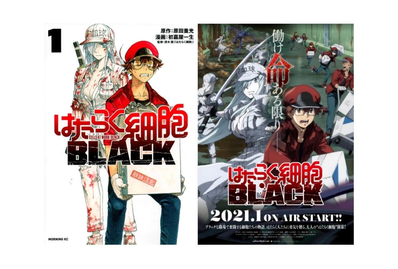 『はたらく細胞BLACK』TVアニメ化!榎木淳弥ら出演声優発表