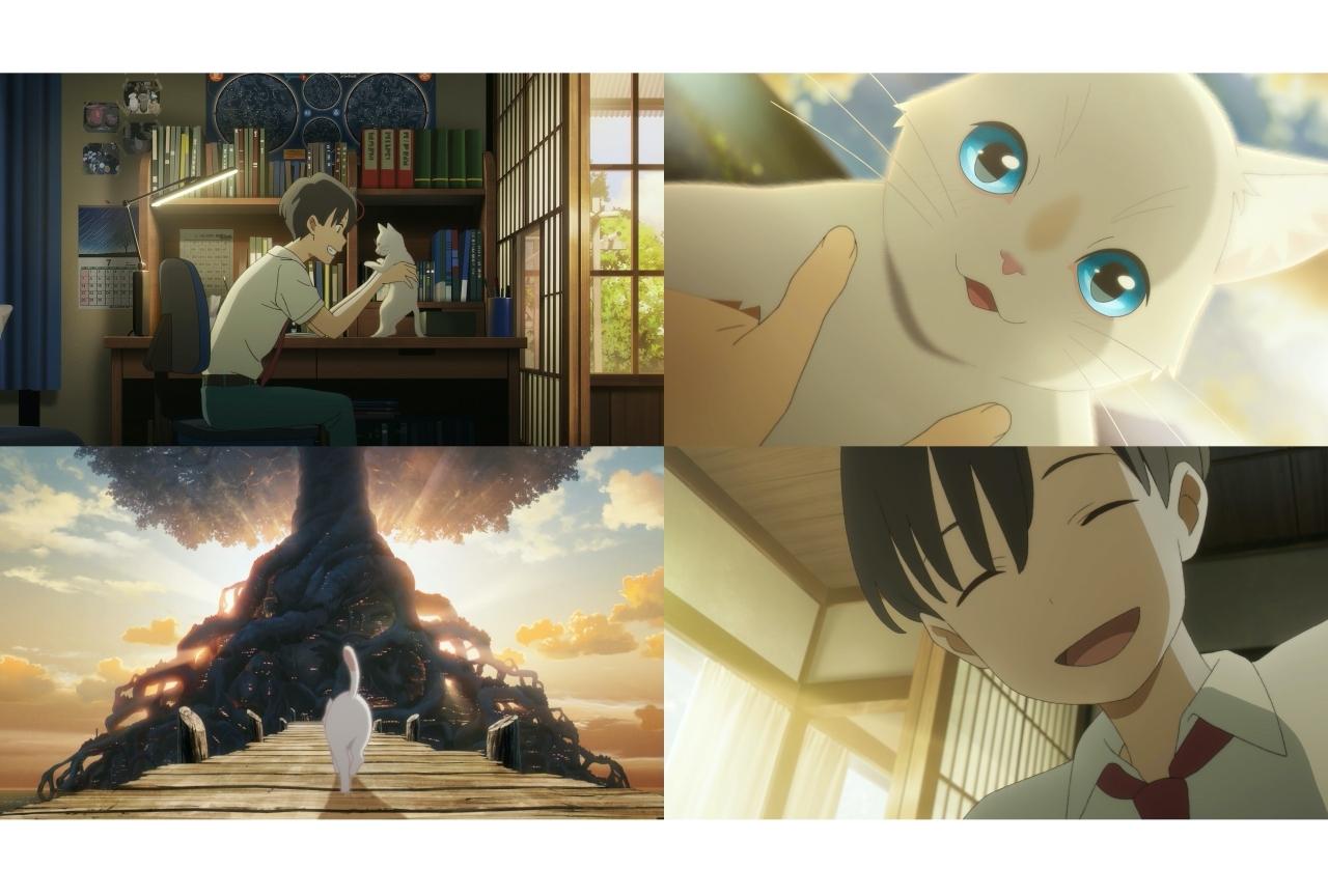 アニメ映画『泣きたい私は猫をかぶる』Netflixで独占配信決定