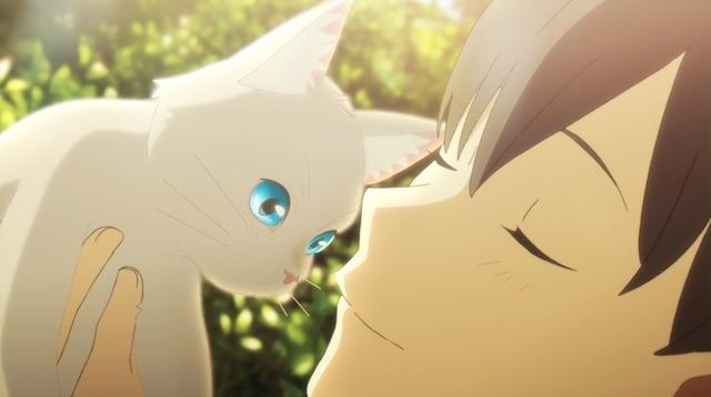 泣きたい私は猫をかぶる-12