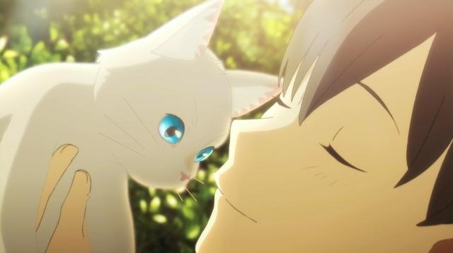 泣きたい私は猫をかぶる-6