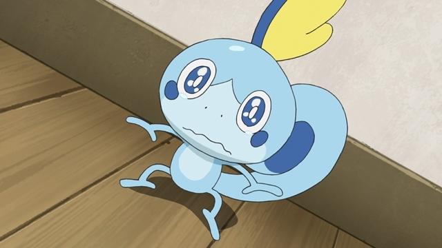 TVアニメ『ポケットモンスター』ついにみずとかげポケモン・メッソン登場! ゲーム『ポケットモンスター ソード・シールド』で最初のパートナーにすることができる3匹のうちの1匹がアニメに-1