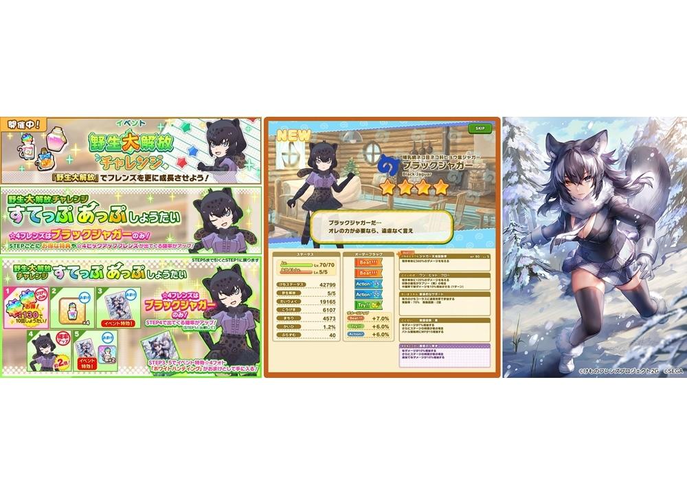 『けもフレ3』新イベント「野生大解放チャレンジ ブラックジャガー編」スタート!