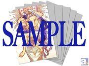アニメ『神々の悪戯』Blu-ray・DVD アニメイト限定版に全巻連動特典が追加!