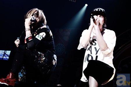 ▲OLDCODEX(photo/YOKO UMEMOTO)