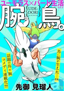 新たなWEBコミック誌『Hugピクシ...