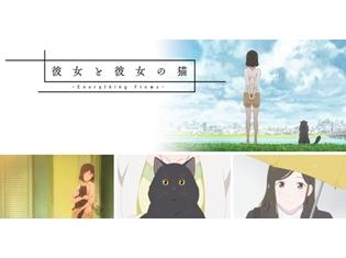 新海誠監督原作のTVアニメ『彼女と彼女の猫 -Everything Flows-』の企画展が、京都国際漫画ミュージアムにて開催!
