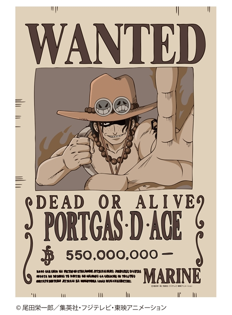 ▲<b>白ひげ海賊団二番隊隊長「ポートガス・D・エース」</b>