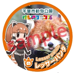 ▲缶バッジ レッサーパンダ(サンプル)
