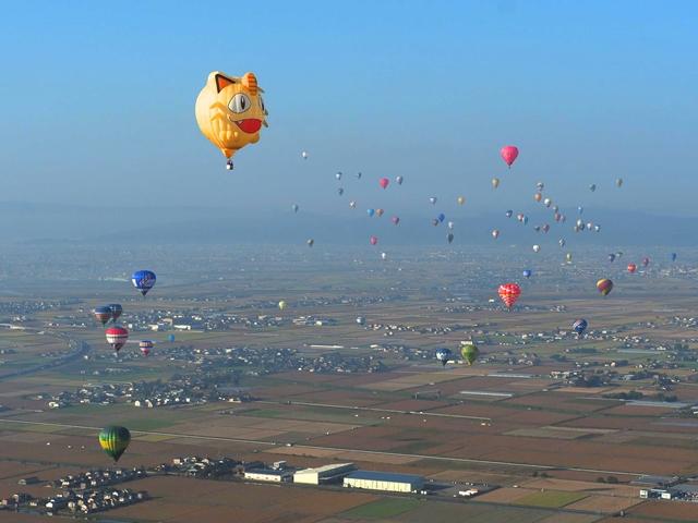▲ニャース気球初の上空での飛行に成功