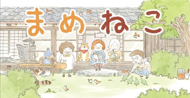 『まめねこ』TVアニメが2018年1月放送開始! 声優陣には明坂聡美さん、大地葉さんなど