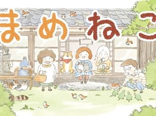 ゆるふわなねこライフを描く『まめねこ』TVアニメが2018年1月より放送開始! 声優陣には明坂聡美さん、大地葉さんなど