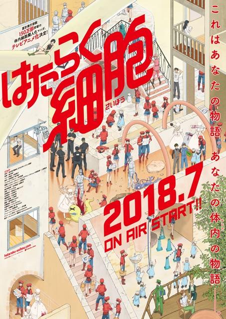 『はたらく細胞』が2018年7月にTVアニメ化決定