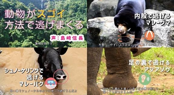 島﨑信長さんがゾウやバクを熱演する動画が公開
