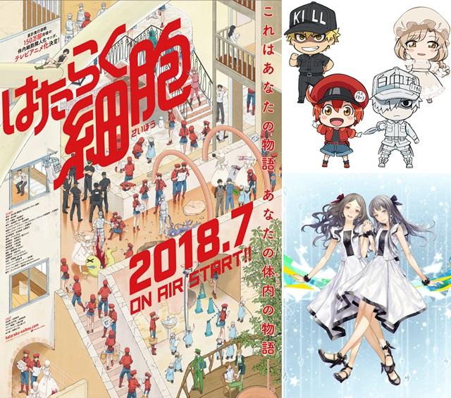『はたらく細胞』追加声優4名解禁!TOKYO MXほかで7月7日放送決定