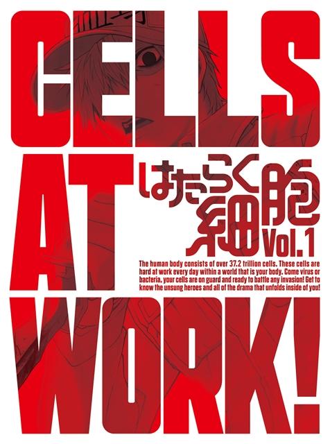 『はたらく細胞』原作絵柄のブロマイドがもらえる! 日本赤十字社 血液センターコラボ応援フェアが、アニメイトにて開催決定-2