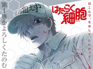 『はたらく細胞』BD&DVD第1巻より、特典ドラマCDの試聴映像公開! パッケージポスターも解禁