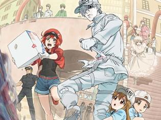 TVアニメ『はたらく細胞』の再放送が決定! 10月6日(土)毎週土曜日21:00より、TOKYO MXにて!