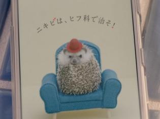 声優・杉田智和さんがハリネズミの教頭役で女子高生に助言!? ハリネズミ教頭の声を担当したニキビ治療啓発動画が公開