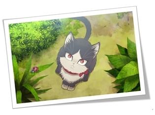 『同居人はひざ、時々、頭のうえ。』あなたの大切な同居人・猫の写真を大募集! 採用作品はTVアニメのエンドカードに