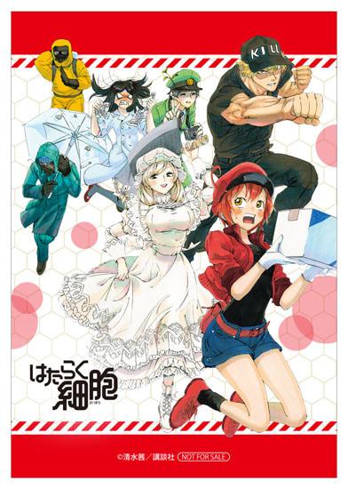 『はたらく細胞』×日本赤十字社 血液センターコラボ応援フェアがアニメイトにて開催