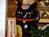 こちらは黒ニャンコ先生のピンショット。黒光りする魅力で、ニャンコ先生と共に今戸神社を訪れる人を魅了?